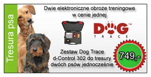 Obroże elektryczne do tresury psów
